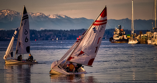Sail boats on the Puget Sound