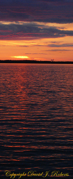 Bellingham Bay Sunset, vertical panorama