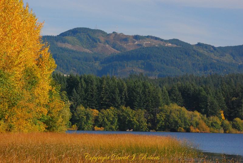 Lake Padden and Lookout Mountain in the Fall, Bellingham WA