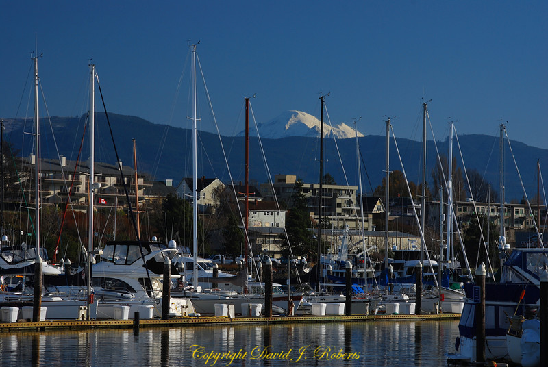 Pleasure craft in Squalicum Harbor with Mount Baker and the city of Bellingham in the background