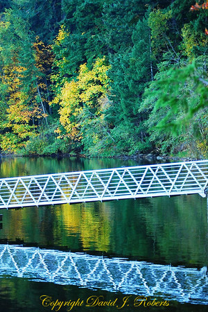 Dock on Lake Padden with reflection, Bellingham WA