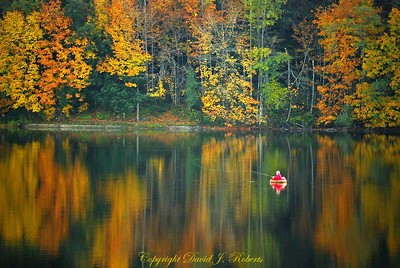 Fly fisherman makes a cast as Lake Padden is perfectly still in the fall, Bellingham WA