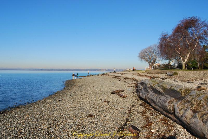 Marine Park beach in Fairhaven, Bellingham WA