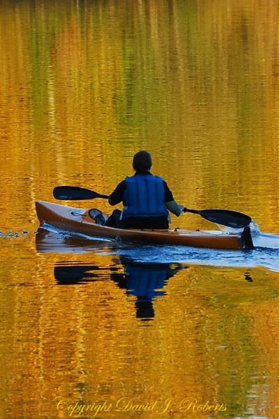 Paddler on Lake Padden with fall reflections, Bellingham WA