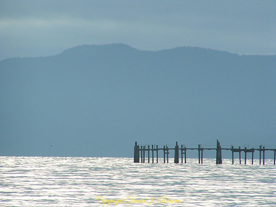 Cement Dock pilings with Lummi Island in the distance, Bellingham WA
