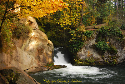 Lower Whatcom Creek falls Whatcom Falls Park, Bellingham WA