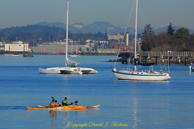 Kayakers and sailboats on Bellingham waterfront
