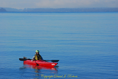 Kayaker near Marine Park in Fairhaven, Bellingham WA