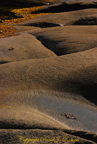Sandstone forms Descanso Bay Gabriola Island