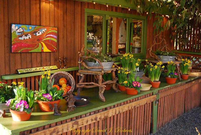 A Lot of Flowers shop in Fairhaven, Bellingham WA