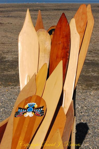 Tribal paddles at Canoe Journey, Lummi Reservation, Washington