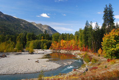 Stehekin River near the village of Stehekin in a splash of autum color. North Central Washington.
