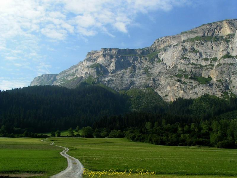 Mountain and baeutiful field near Flim, Switzerland