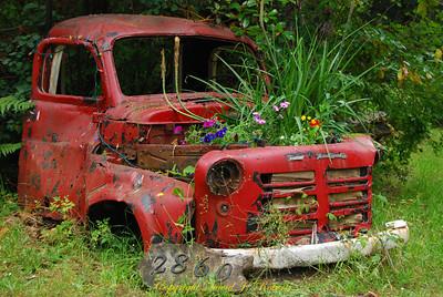 Old truck planter Gabriola Island, BC