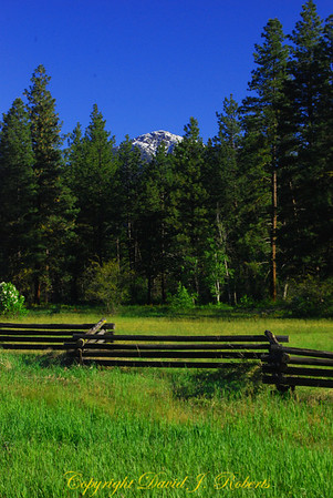 Pasture scene in Methow Valley near Mazama, WA