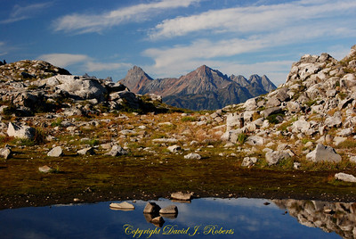 Reflections on a small tarn near Artist Point,  Whatcom County, Washington