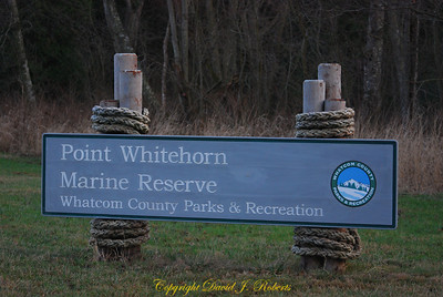 Point Whitehorn Marine Reserve, Whatcom County, Washington