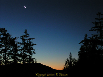 Moon at sunrise near Galbraith Mountain, Whatcom County, Washington