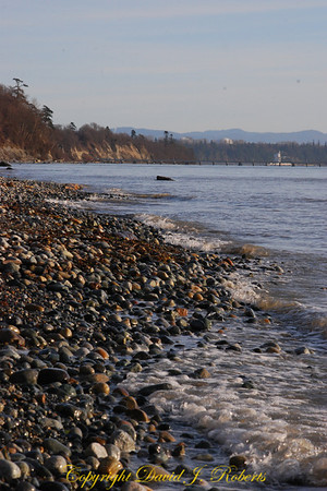 Beach at Point Whitehorn County Park, Whatcom County Washington