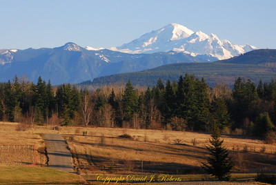 A winter view of Mount Baker from the Noon Road.