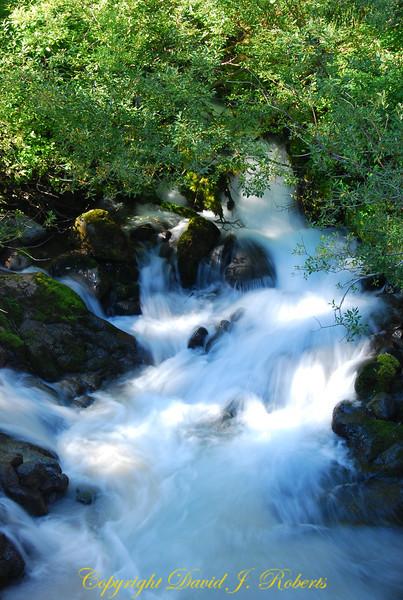 Small stream near Mount Baker Washington