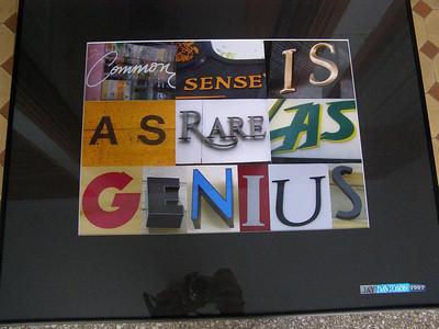 Common sense is as rare as genius. (Ralph Waldo Emerson)