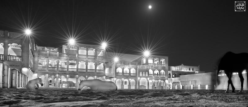 Under the moon Light