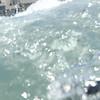 17 08-17 Carlsbad Beach 9437