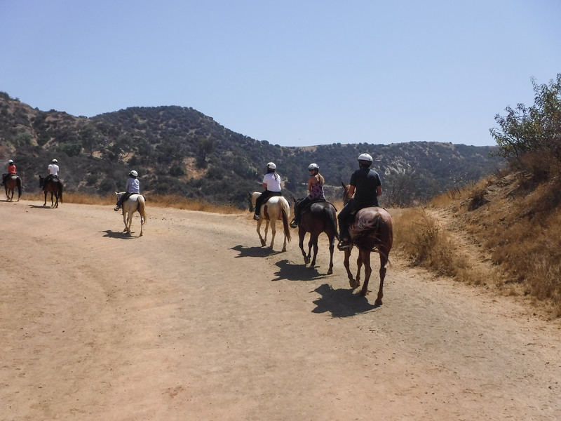 17 08-19 Sunset Ranch 020