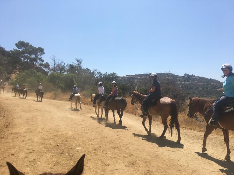17 08-19 Sunset Ranch 7242