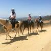 17 08-19 Sunset Ranch 7202