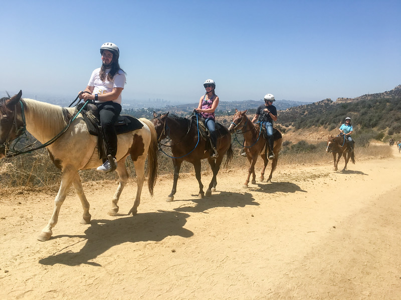 17 08-19 Sunset Ranch 7205