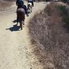 17 08-19 Sunset Ranch 8962