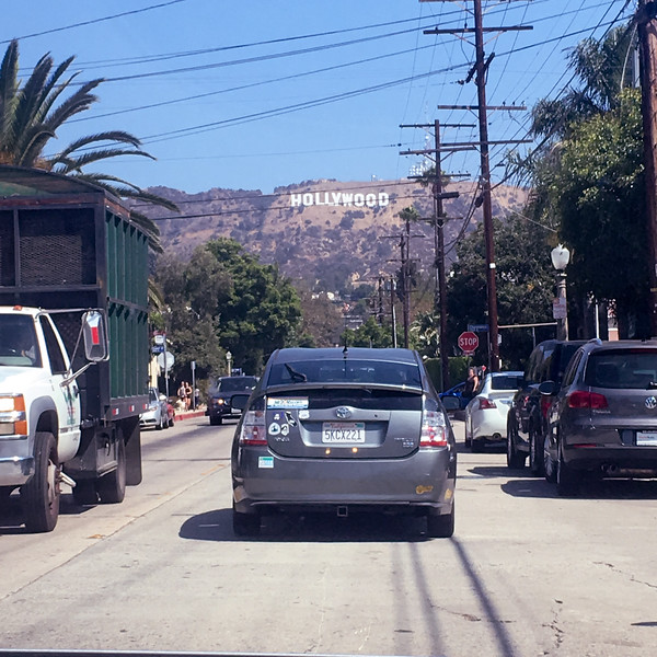 17 08-19 Hollywood 7191