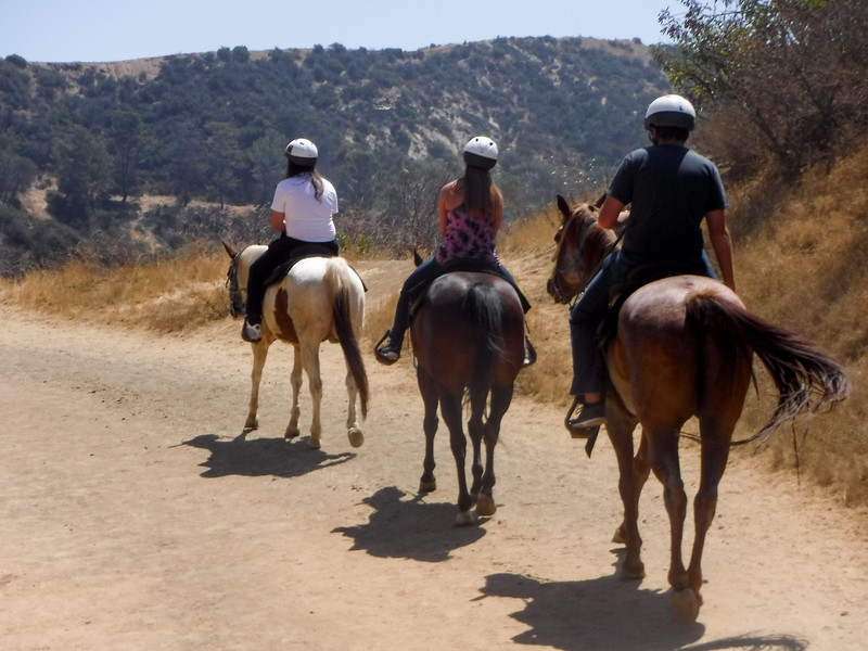17 08-19 Sunset Ranch 019