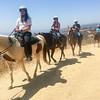 17 08-19 Sunset Ranch 7214