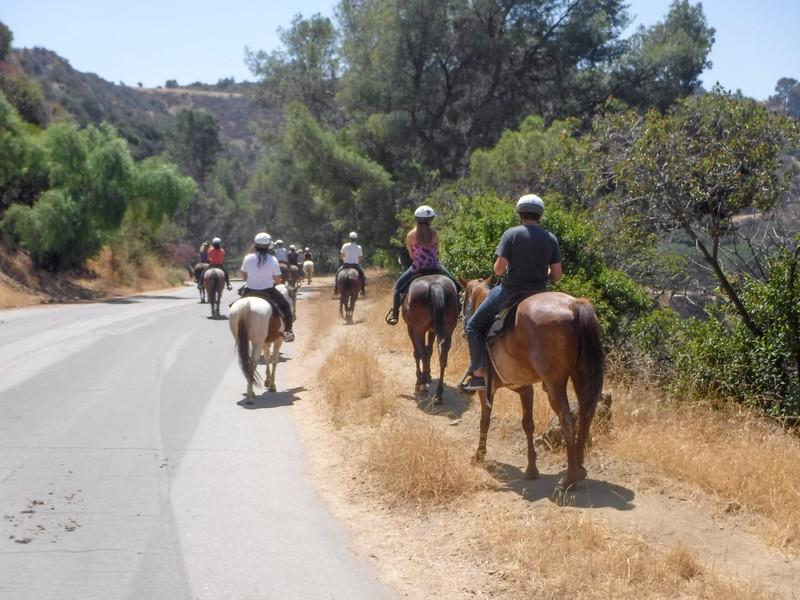 17 08-19 Sunset Ranch 027