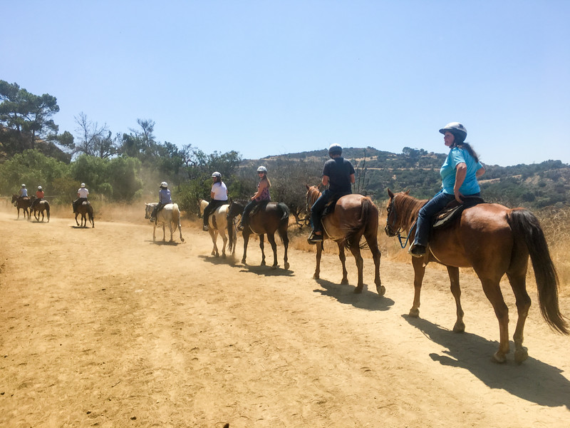 17 08-19 Sunset Ranch 7240