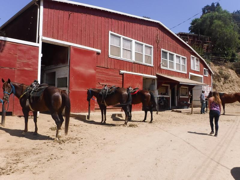 17 08-19 Sunset Ranch 001