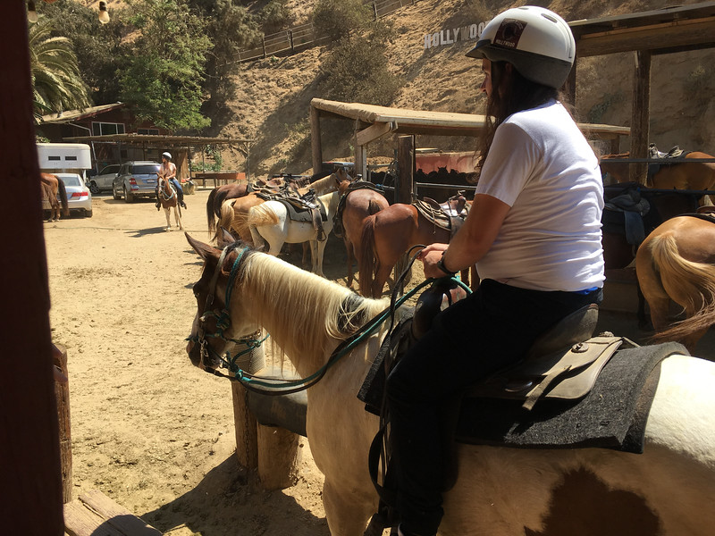 17 08-19 Sunset Ranch 8957