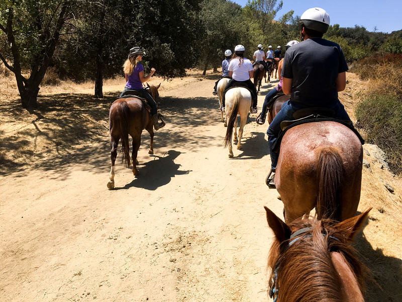 17 08-19 Sunset Ranch 8967