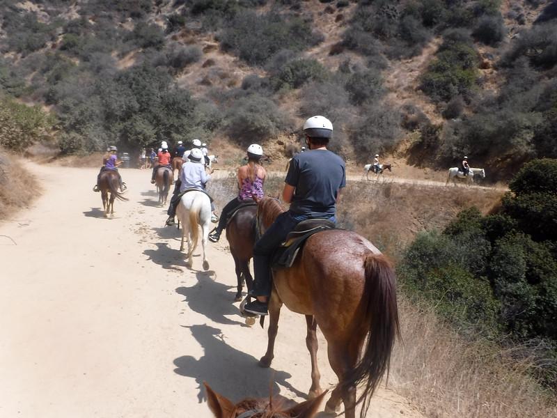 17 08-19 Sunset Ranch 009