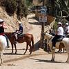 17 08-19 Sunset Ranch 002