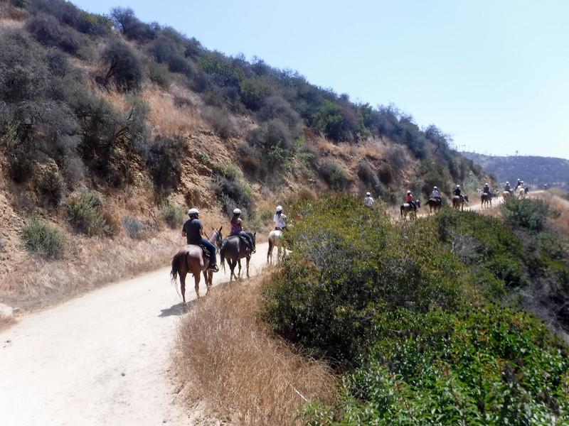 17 08-19 Sunset Ranch 014
