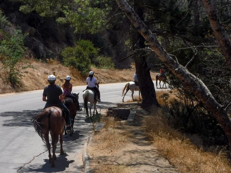 17 08-19 Sunset Ranch 029
