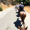17 08-19 Sunset Ranch 8965