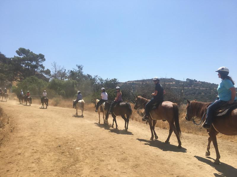 17 08-19 Sunset Ranch 7241