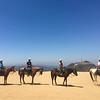 17 08-19 Sunset Ranch 7248