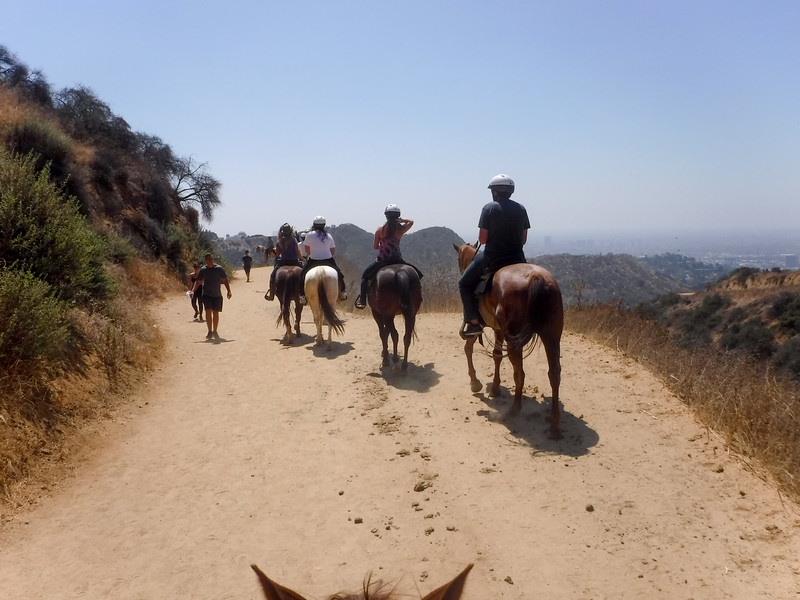 17 08-19 Sunset Ranch 012