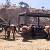 17 08-19 Sunset Ranch 8952